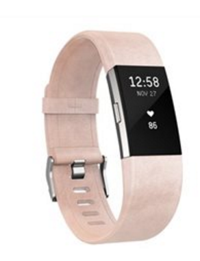 Option 4: Fitbit.com // Fitbit Charge 2 Leather Band. $90 CAD.